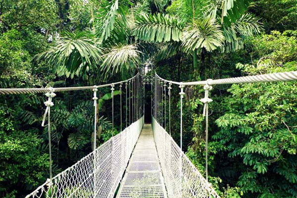 Arenal-Hanging-Bridges-Nature-Walk-Costa-Rica-Tour-Travel-Vacation
