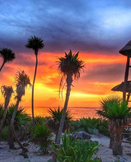 Valentin-Imperial-Riviera-Maya-Hotel-Playa-del-Carmen-Luxury-Resort